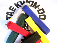 Your Taekwon-Do Belt is Meaningless