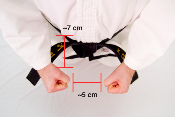Taekwon-Do parallel ready stance - hands