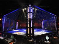 The Rise of Taekwon-Do in MMA