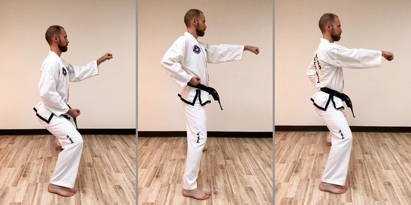 Taekwon-Do punch 10