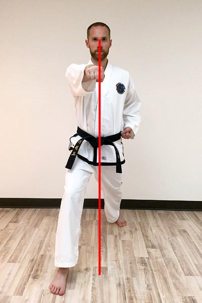 Taekwon-Do Punch 11