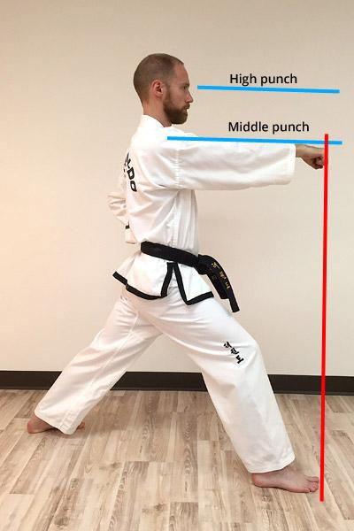 Taekwon-Do Punch 12