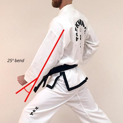 Taekwon-Do outer forearm low block angle