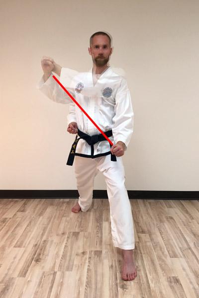 Taekwon-Do outer forearm low block motion