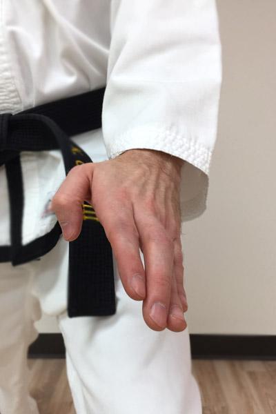 Taekwon-Do knife-hand low block angle