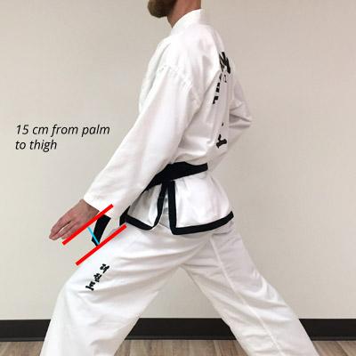 Taekwon-Do low knife-hand block measurements