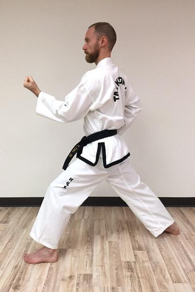 Taekwon-Do inner forearm block side view