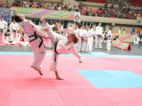 That Wouldn't Work in a Real Fight: Defending the Art in Taekwon-Do