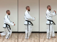Sine Wave in Taekwon-Do: That Funny Bouncing