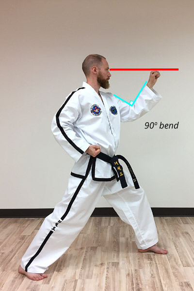 Taekwon-do outer forearm high side block diagram